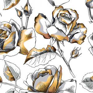 decorative-illustration